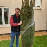 Christmas Tree Decoration at Firs Nursing Home in Taunton