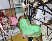 Valentines at The Firs Residential Nursing Home in Taunton