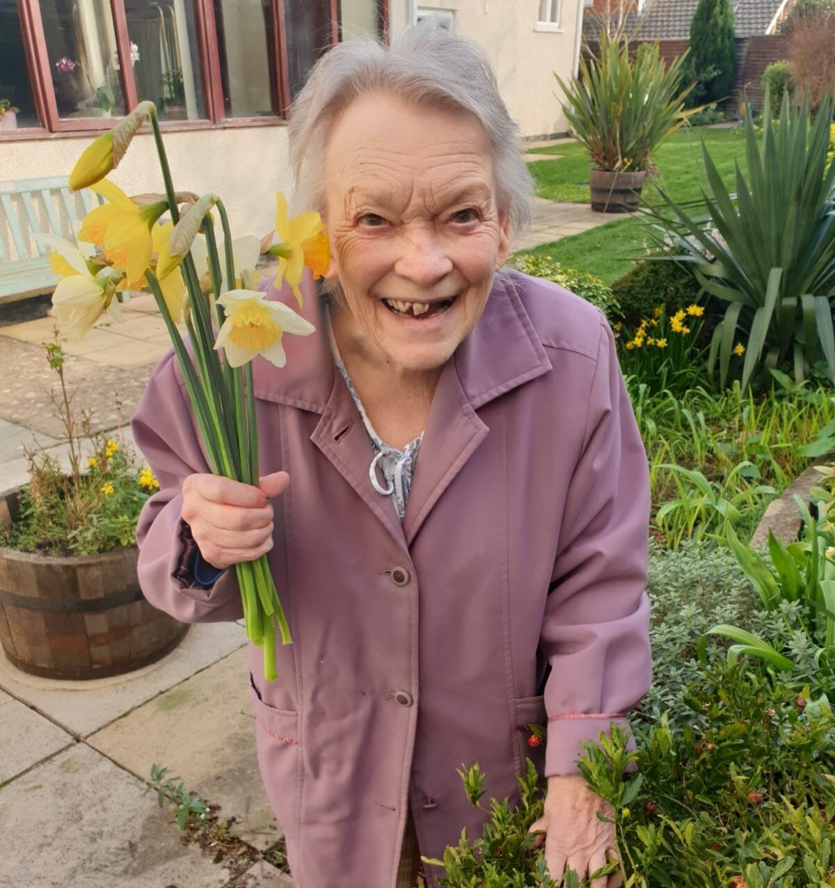 Daffodils at The Firs Nursing and Care Home in Taunton