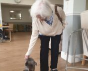 Pets as therapy at The Firs Nursing and Care Home in Taunton