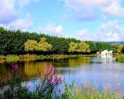 Boating Lake In Llaynravon