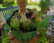 Outdoor Flowers at the Firs Nursing Home in Taunton