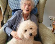 Pets at therapy at The Firs Nursing Home in Taunton