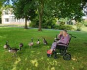 Feeding the Geese at The Firs Nursing Home In Taunton
